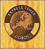 Express Teher_Logo_13.png